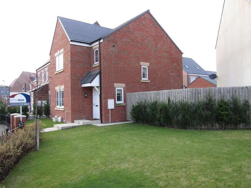 3 Bedrooms Detached House for sale in Kensington Way, Newfield, Chester-le-Street, County Durham, DH2 2BF