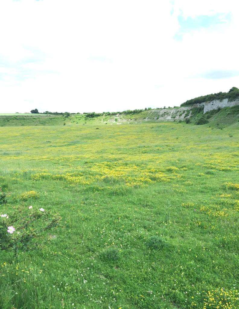 Land Commercial for sale in Sewell, Dunstable