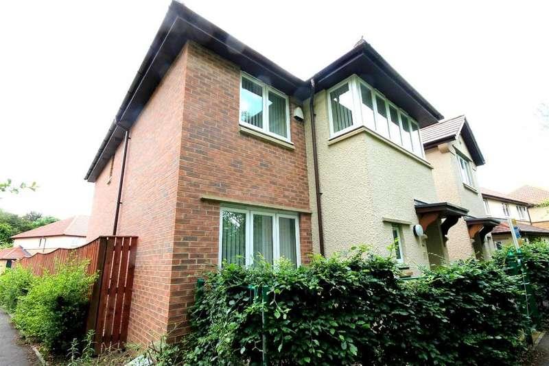 4 Bedrooms Detached House for sale in Locomotion Lane, Darlington
