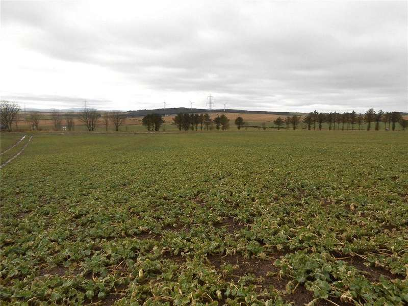 3 Bedrooms Land Commercial for sale in Lot 1, Burrowley, Ellon, Aberdeenshire, AB41