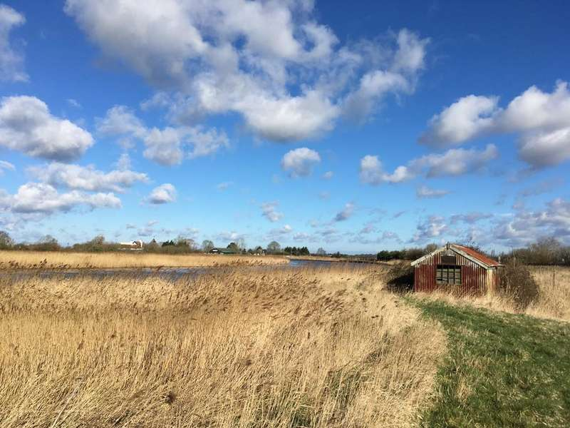 Land Commercial for sale in Stokesby, Norfolk