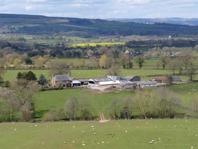 3 Bedrooms Detached House for sale in Brimfield, Hereford