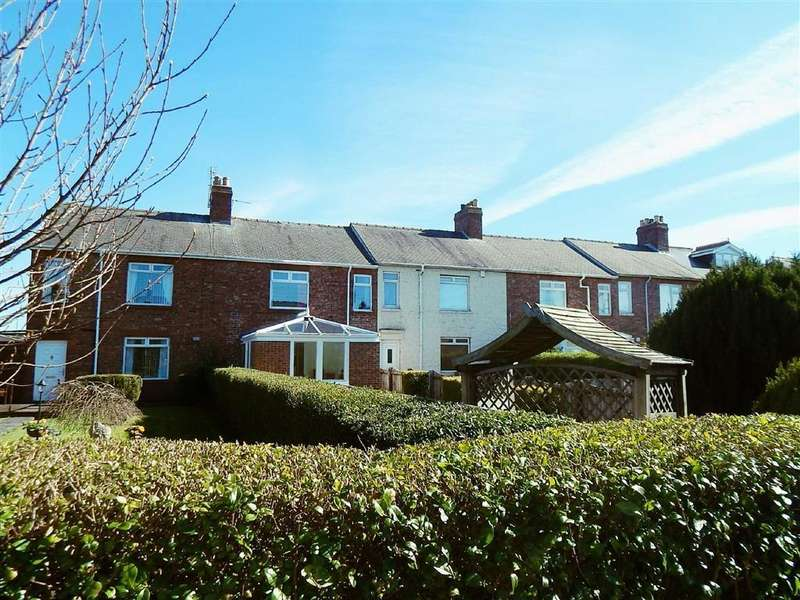 3 Bedrooms Terraced House for sale in Fir Terrace, Burnopfield, Newcastle Upon Tyne, NE16