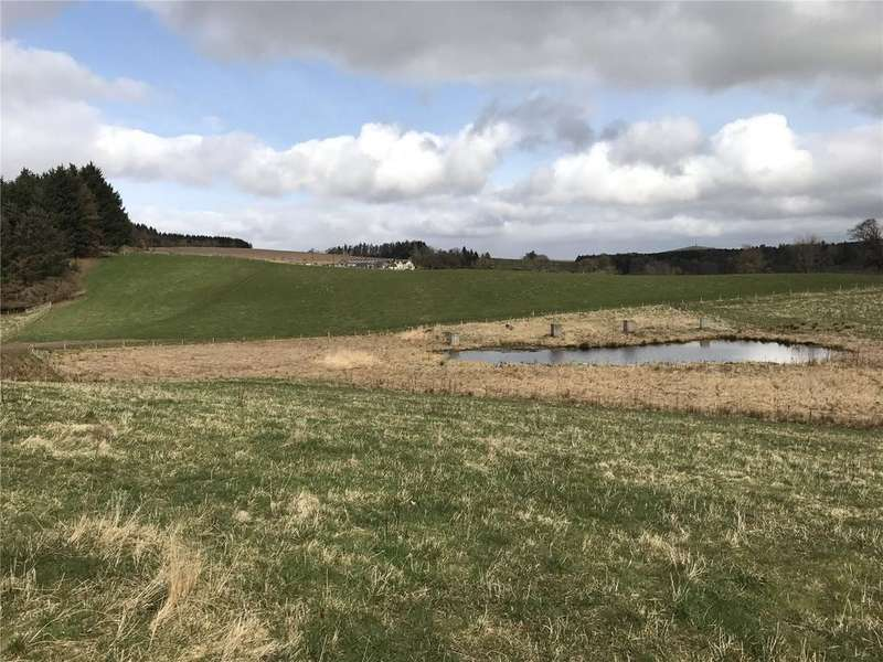 Equestrian Facility Character Property for sale in Lot 3: Farmland At Easter Keith, Lundie, Dundee, Angus