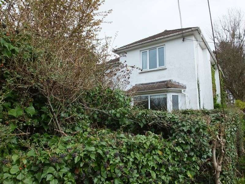 3 Bedrooms Detached House for sale in Belgrave Road, Abergavenny