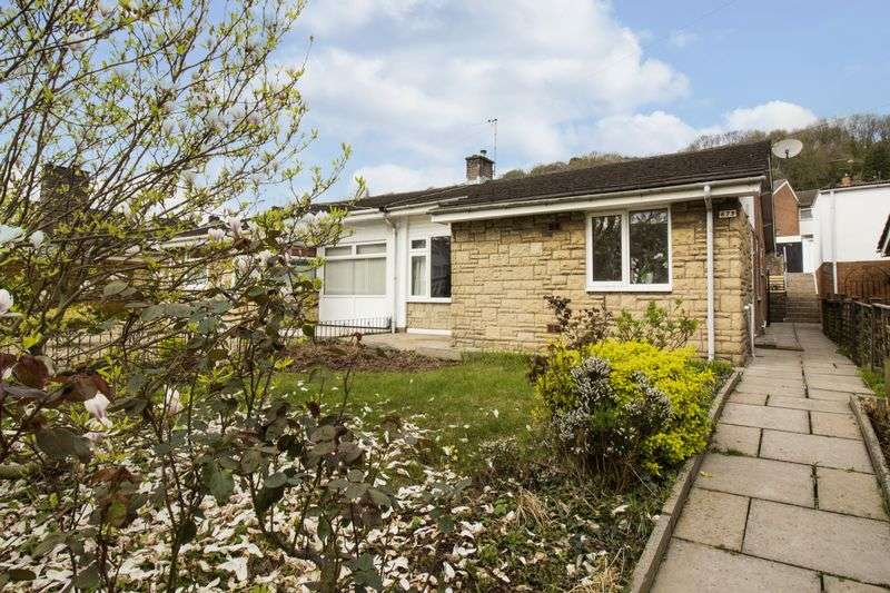 2 Bedrooms Semi Detached Bungalow for sale in Chepstow Road, Newport