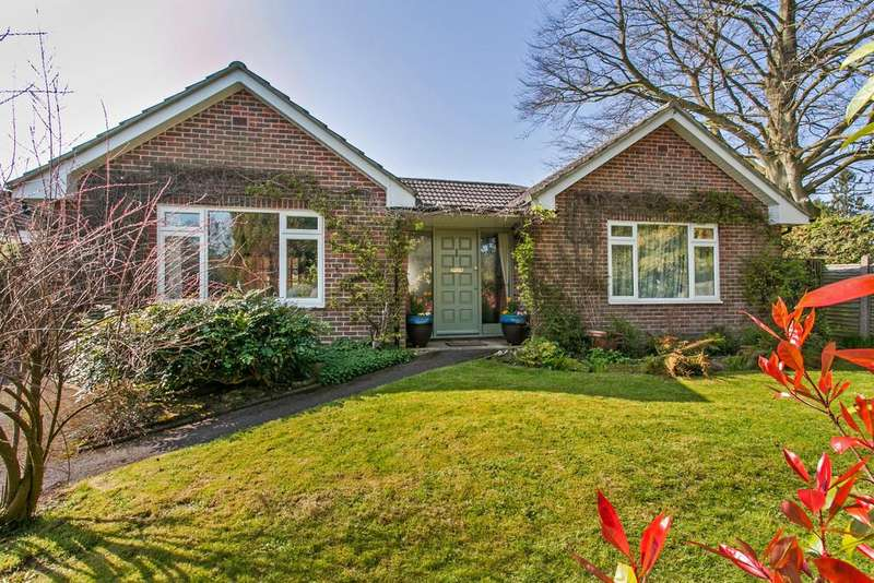 4 Bedrooms Detached Bungalow for sale in Hillside Close, Winchester, SO22