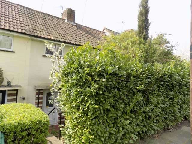 2 Bedrooms Terraced House for sale in Davey Drive, Brighton