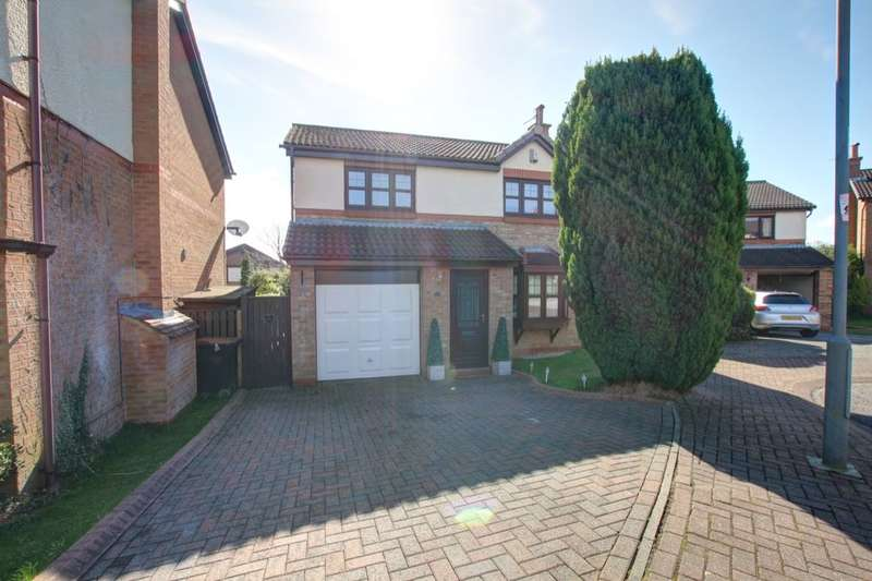 4 Bedrooms Detached House for sale in Brancepeth View, Brandon, Durham, DH7
