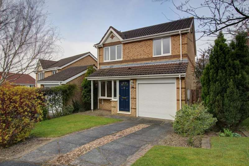 3 Bedrooms Detached House for sale in Penshaw View, Sacriston, Durham, DH7