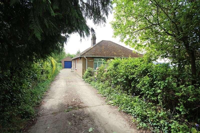 3 Bedrooms Detached Bungalow for sale in Snails Lane, Blashford, Ringwood