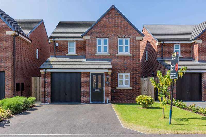 3 Bedrooms Detached House for sale in Badgers Holt, Branton, Doncaster, DN3