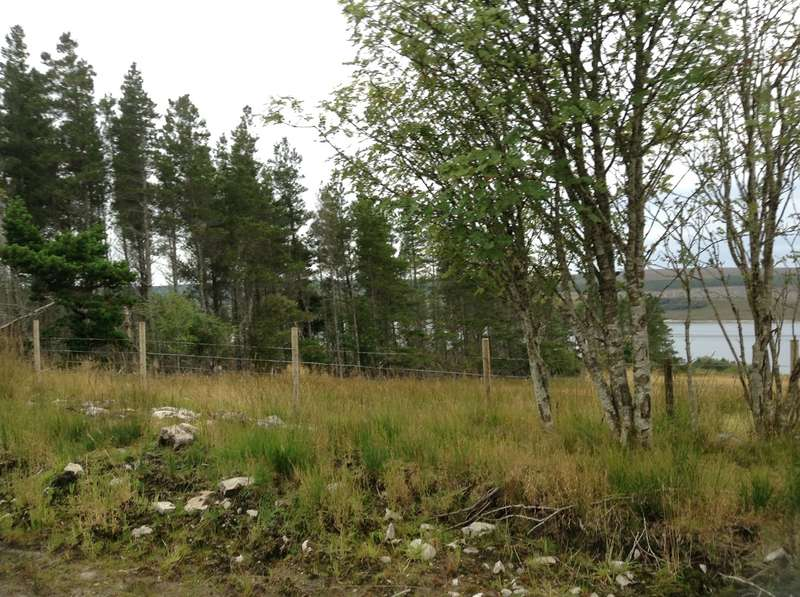 Land Commercial for sale in Achairn, Shinness, Lairg, IV27