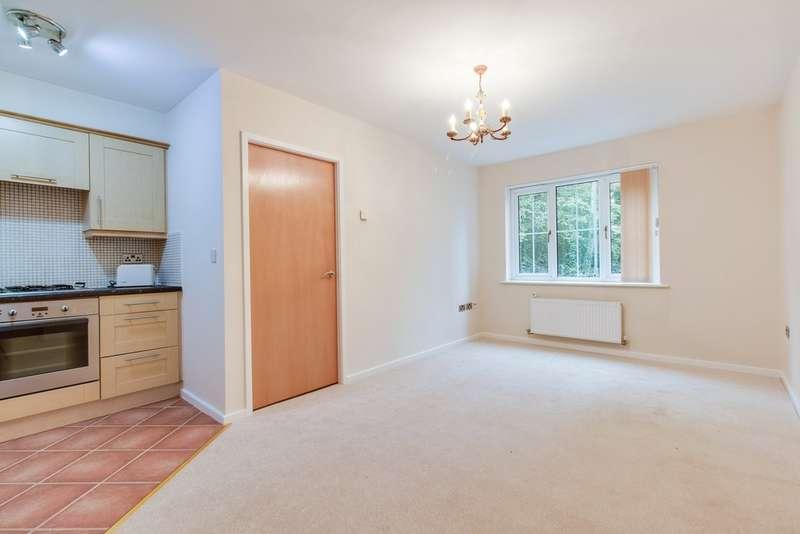 1 Bedroom Ground Flat for sale in St Matthews Close, Renishaw