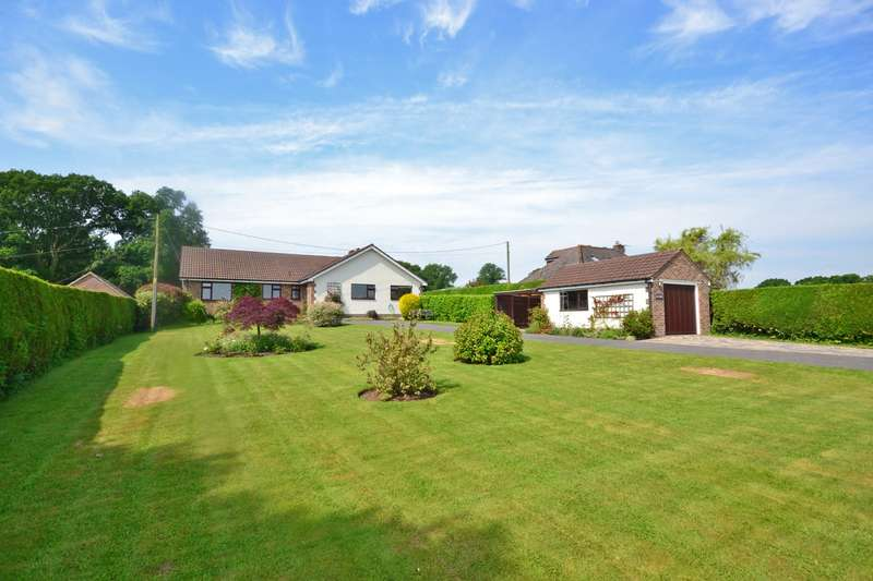 4 Bedrooms Detached Bungalow for sale in Church Lane, Coldwaltham, West Sussex, RH20