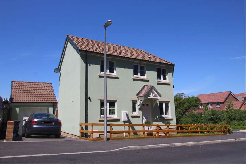3 Bedrooms Semi Detached House for sale in Larkspur Drive, Newton Abbot, TQ12