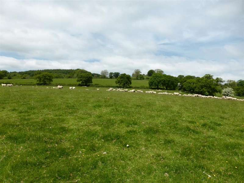 Land Commercial for sale in Taliaris, Llandeilo