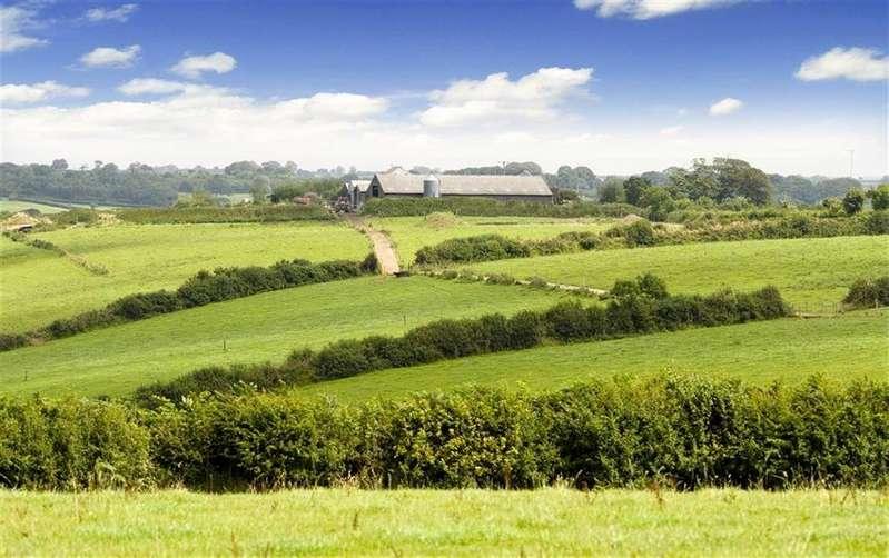 3 Bedrooms Detached House for sale in Milton Damerel, Holsworthy, Devon, EX22