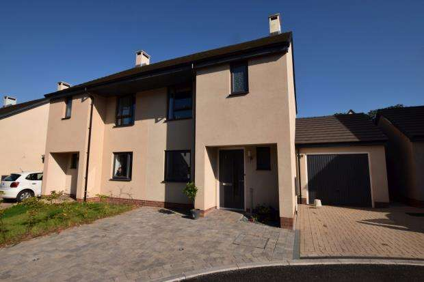 3 Bedrooms Semi Detached House for sale in Great Tree Close, Paignton, Devon
