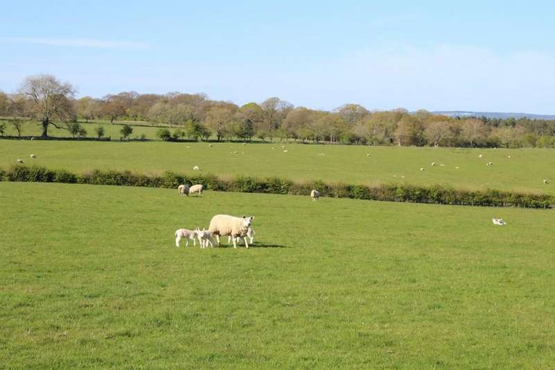 Land Commercial for sale in Lot 3 - East Wingates Farm, Longhorsley