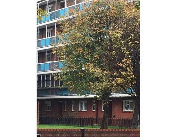 2 Bedrooms Flat for sale in Jubilee Street, London