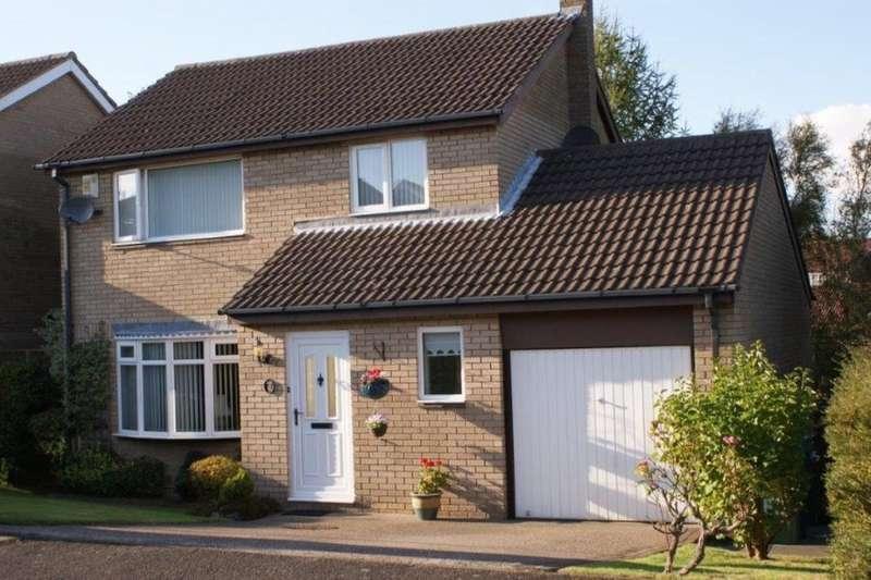 3 Bedrooms Detached House for sale in Spen Burn, High Spen, Rowlands Gill, NE39