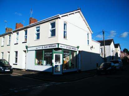 3 Bedrooms End Of Terrace House for sale in Exmouth, Devon