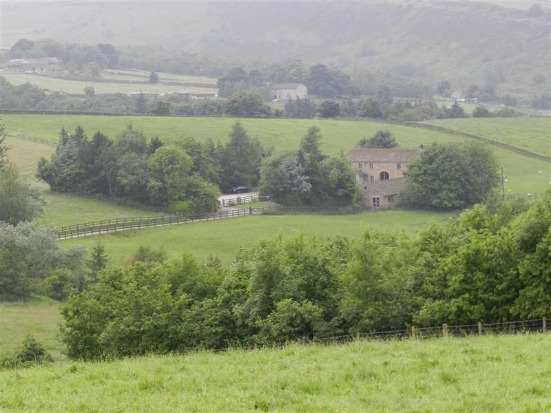 4 Bedrooms Detached House for sale in Thick Hollins, Meltham, Holmfirth, HD9