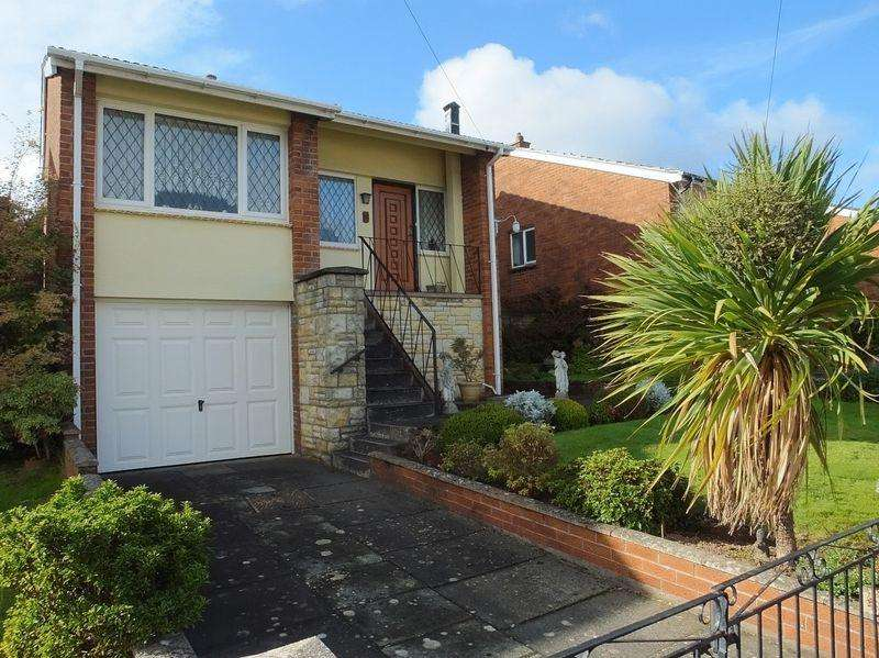 3 Bedrooms Detached House for sale in Basildene Close, Abergavenny