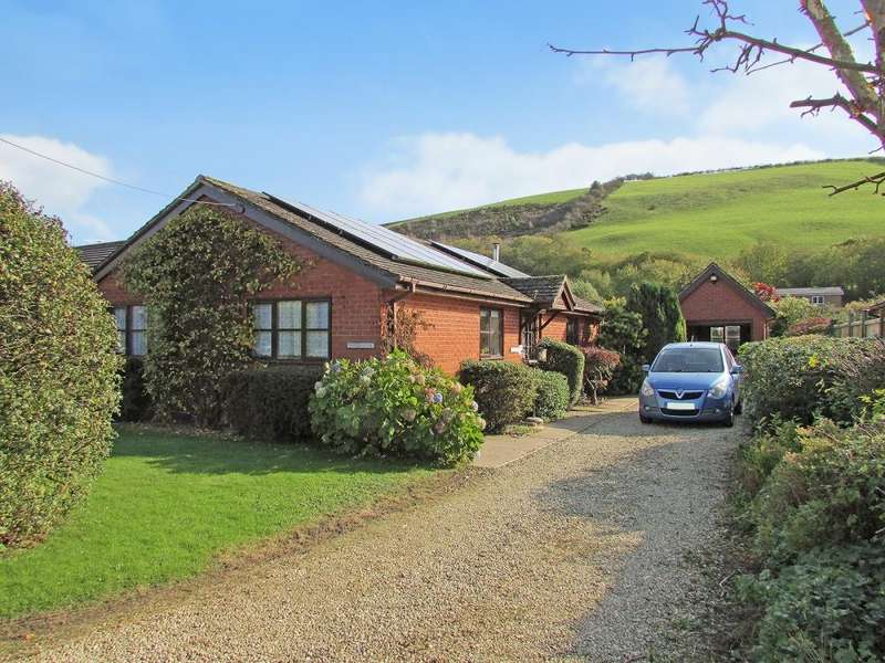 3 Bedrooms Detached House for sale in Knucklas, Knighton, LD7