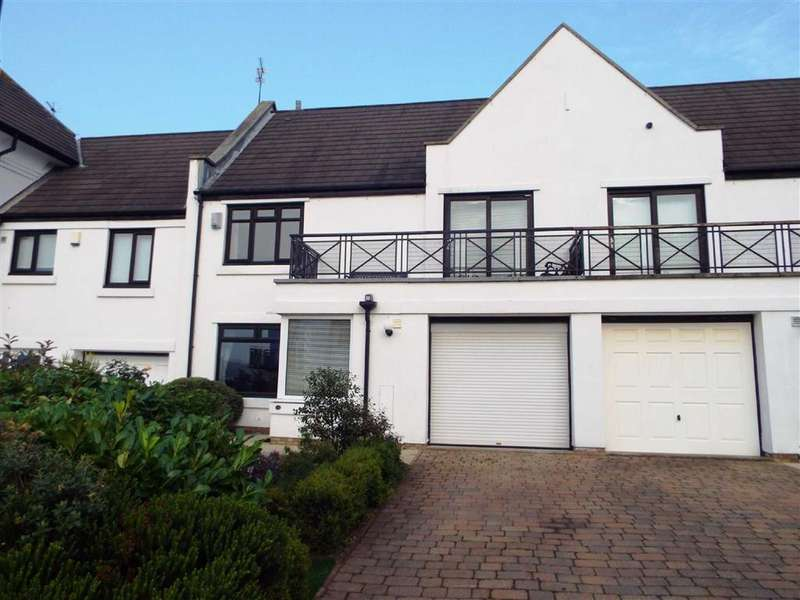 3 Bedrooms Terraced House for sale in Harbour View, South Shields