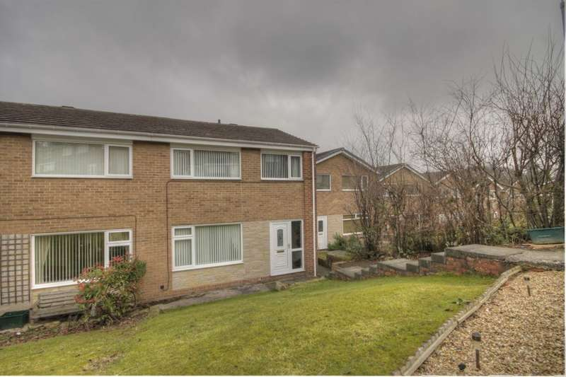 3 Bedrooms Semi Detached House for sale in Meadow Way, Lanchester, Durham, DH7