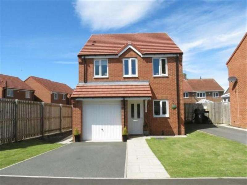3 Bedrooms Detached House for sale in Ramsay Close, Peterlee, County Durham, SR8 5EL