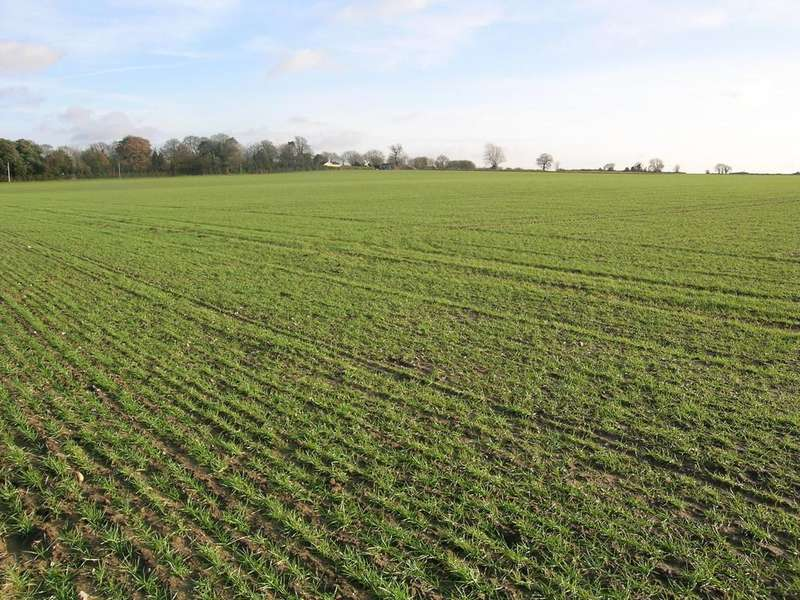 Land Commercial for sale in 20.78ha (51.35ac) Land At Thurlton