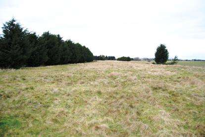 Land Commercial for sale in Tilney St. Lawrence, Kings Lynn, Norfolk