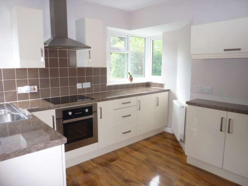 3 Bedrooms Detached House for rent in Westbury Street, Derby DE22