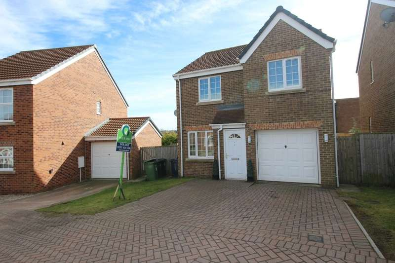3 Bedrooms Detached House for sale in Dockendale Place, Blaydon-On-Tyne, NE21