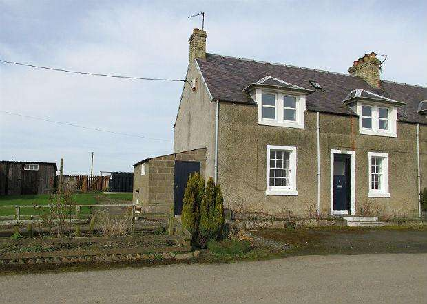 2 Bedrooms Semi Detached House for rent in 2 Rutherford Burnside, Rutherford, Kelso, Scottish Borders, TD5 8NR
