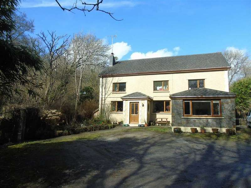 4 Bedrooms Detached House for sale in Blaen Y Coed, Y Graig, Burry Port