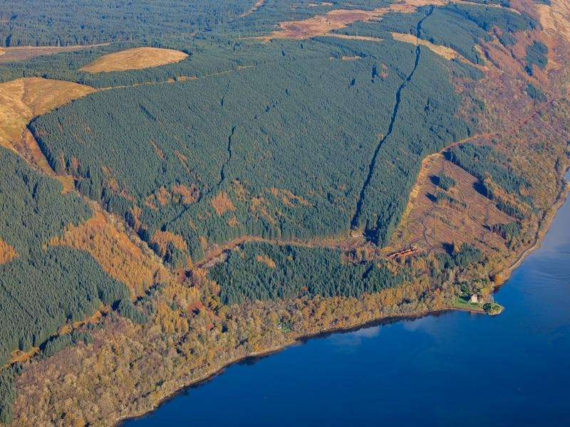 Land Commercial for sale in Dunderave Forest, Inveraray, Argyll PA32
