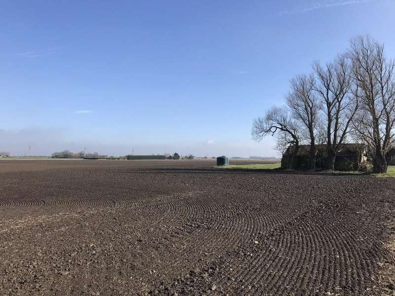 Land Commercial for sale in Gorefield, Wisbech, Cambridgeshire, 143 Acres of Productive Arable Land
