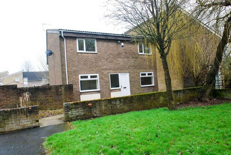 2 Bedrooms Semi Detached House for sale in Simonside Hall, South Shields