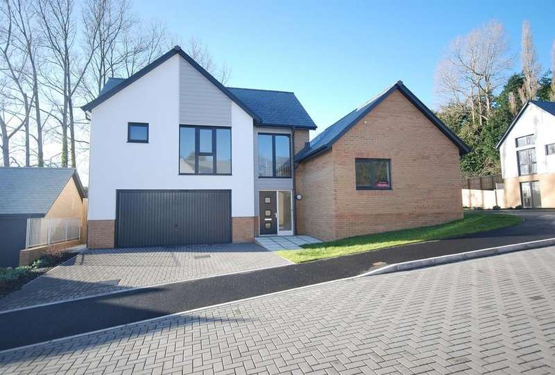 3 Bedrooms Detached House for sale in Meadow Rise, Northam, Nr Bideford