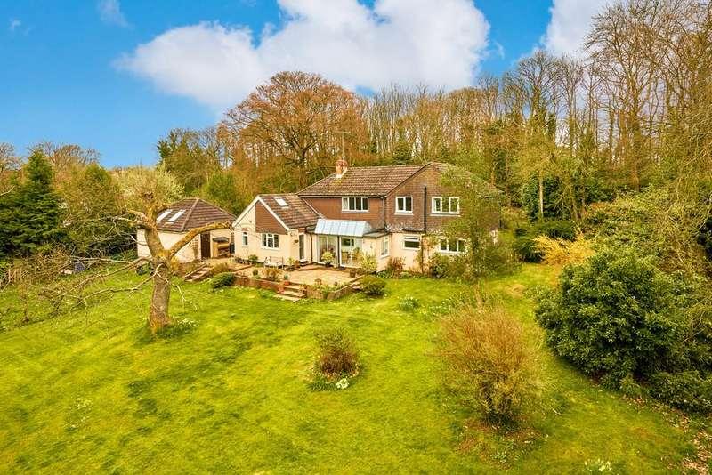 4 Bedrooms Detached House for sale in Old Odiham Road, SHALDEN, Alton, Hampshire