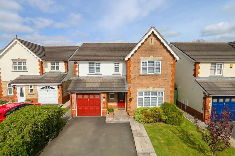 4 Bedrooms Detached House for sale in Millstream Meadow, Chudleigh