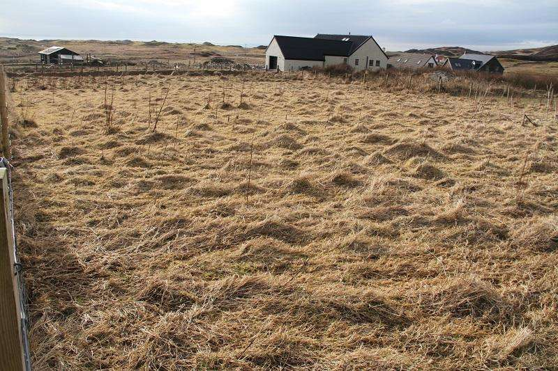 Plot Commercial for sale in Upper Kilchattan, Isle of Colonsay PA61