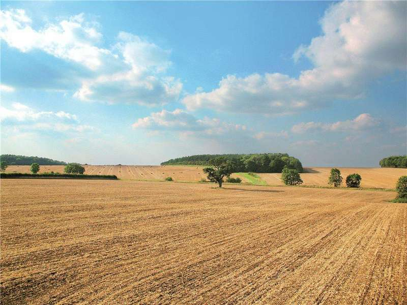 9 Bedrooms Plot Commercial for sale in Nr Weston Green, Cambridgeshire, CB21