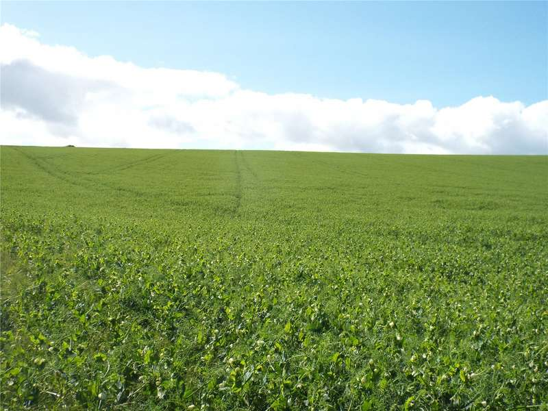 3 Bedrooms Farm Commercial for sale in Lot 2: Land At Cairns, Fyvie, Turriff, Aberdeenshire, AB53