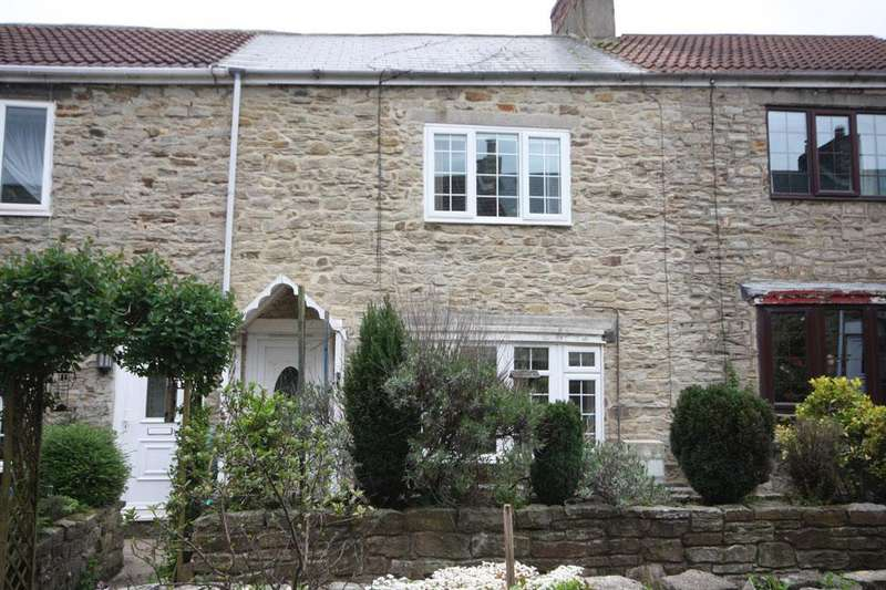 2 Bedrooms Terraced House for sale in Lime Street, Waldridge Village, Chester-le-Street, DH2 3SG