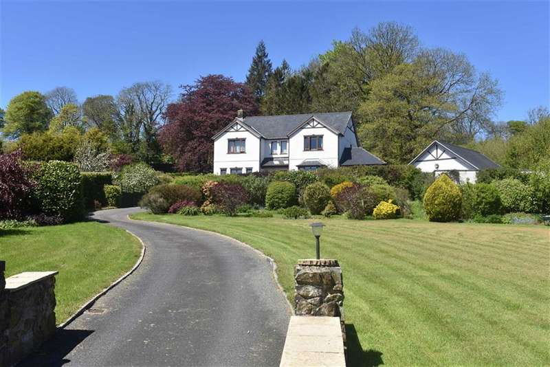 4 Bedrooms Detached House for sale in Alltyblacca, Llanybydder